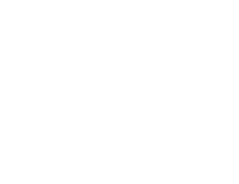 Test realized on September 2018 with: Test rod on the bottom side, PPT-standard-coupler as connecting part Grade 50 (500) 32mm Ø rebar with the PPT long-position-rolled-tread on the top side. Bar-break at 551 kN